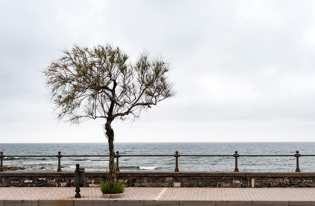 Parco Nazionale di Cilento; Provinz Salerno; Region Campania; Kampanien; Italien; Acciaroli