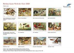 Brehms Tiere Bildkalender 2020 Indexseite